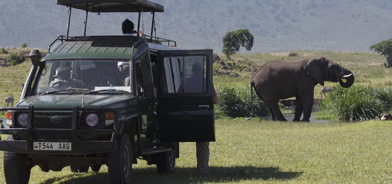 Сафари в Нгоронгоро, тур в Танзанию
