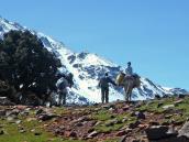 Треккинг в Марокко, треккинг в Атласских горах