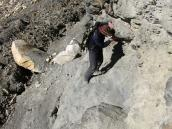 крутой опасный подъем к лагерю Васуки Тал (4800 м), Ганготри - Бадринадх
