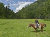 Прогулки на лошади
