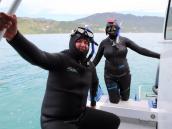 тур в Новую Зеландию, снорклинг с дымчатыми дельфинами в Кайкуре