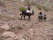 Фото из тура в Аргентину в 2012 году. Встреча с гаучо на треке к Аконкагуа