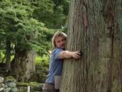 Фото из тура в Японию в 2012 году. Вековые деревья рядом с храмами только подчеркивают бережливось японцев, передающуюся веками вне зависимости от времен и правителей.