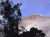 Фото из тура в Танзанию в 2004 году. Вид на вершину Меру  от лагеря Мириакамба.