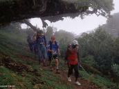 Фото из тура в Танзанию в 2004 году. Спуск по склону Меру, заросшему лесом. Во главе группы вооруженный рейнджер.