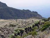 Фото из тура в Танзанию в 2005 году. Лагерь Барранко лежит в глубокой ложбине, оставленной гигантским селеим, вроде Кармадонского.