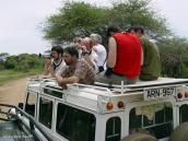 Фото из тура в Танзанию в 2005 году. Если ничего не угрожает, самое удобное место для наблюдения за животными на сафари - с крыши джипа.