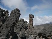 Фото из тура в Танзанию в 2009 году. Застывшая лава превратилась в каменный лес.