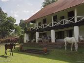 Фото из тура в Танзанию в 2011 году. В Аруше наша любимая гостиница - частный ресорт Нгаресеро. Здесь можно любоваться Килиманджаро, сидя на террасе с чашечкой кофе, половить форель, покататься на лошади и выкупаться в бассейне.