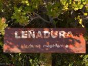 Фото из тура в Патагонию в 2012 году. Смешные заметки на тропе в Патагонии.