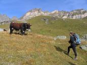 Фото из тура в Швейцарию в 2004 году. Рандеву в горах.