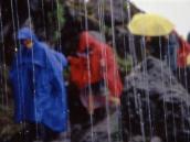 Нордический треккинг  под потоками воды