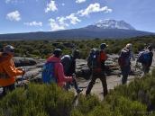Восхождение на Килиманджаро, плато Шира, переход во второй лагерь на высоте 3800 м.