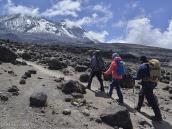 Восхождение на Килиманджаро: поднимаемся к перевалу у Лавовой Башни.