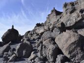 Древний лавовый поток в Барафу на Килиманджаро похож на каменный лес.