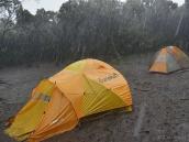 В итоге, сильнейший дождь смыл нас с горы. Это ситуация в последнем лагере Мвека. Мы предпочли идти еще 3,5 часа до темноты к воротам Нац. парка, за день поднявшись на 1200 м и спустившись на 4000 м.