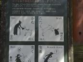 тур в Японию, олень может вас укусить, забодать, лягнуть и сбить с ног.