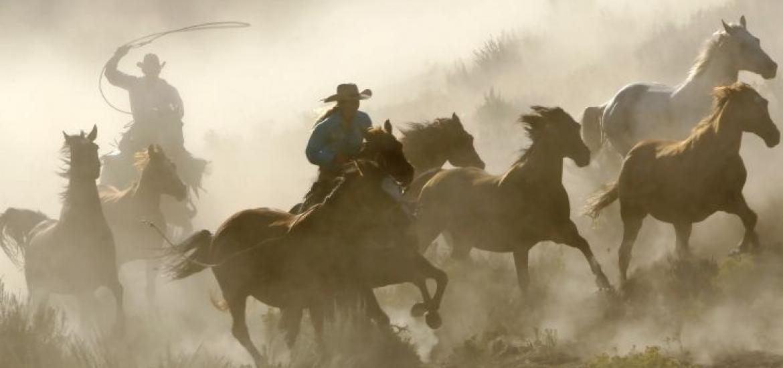 Тур в США: по стране ковбоев