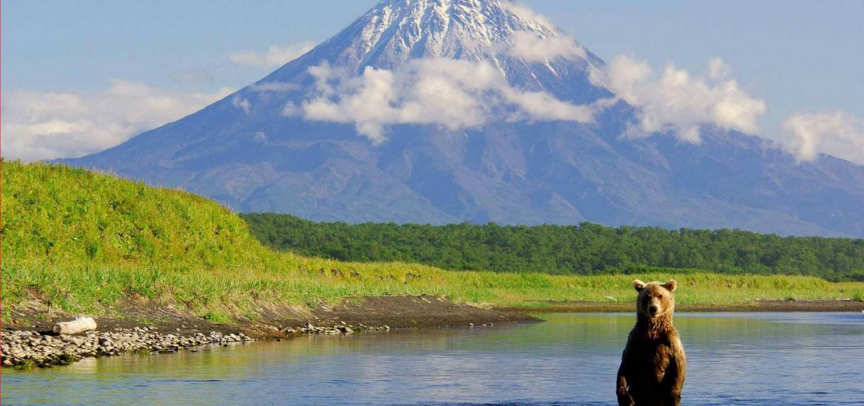 Камчатка - страна вулканов и медведей