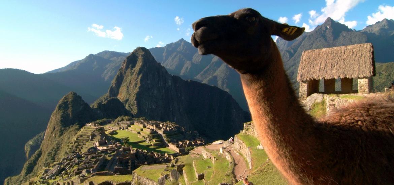 Тур в Перу и Боливию: Золотое кольцо империи Инков