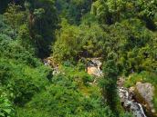 Долина горной реки в Рувензори