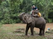Треккинг на слонах в Северном Таиланде, провинция Чиангмай. Фото из тура в Бирму (Мьянму) и Таиланд автор Иван Прилежаев (с)