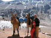 Фото из тура в Аргентину в 2006 году. Погонщик с мулами под стеной Аконкагуа
