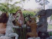Фото из тура в Танзанию в 2003 году. Ослян, козлян, медведян и макакян (2)