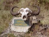 Фото из тура в Танзанию в 2003 году. Так случиться может с каждым...