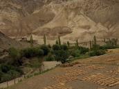 Фото из тура в Индию в 2005 году. По дороге можно наблюдать, как местные жители убирают скудный урожай ячменя.