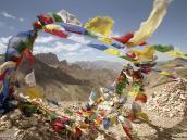 Фото из тура в Индию в 2005 году. Вид с перевала Конске-Ла. Индийские Гималаи.