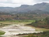 Фото из тура на Мадагаскар в 2007 году. Рисовые поля