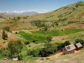 Фото из тура на Мадагаскар в 2007 году. Отличительная черта Мадагаскара - это яркие насыщенные цвета природы