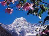 Фото из тура в Непал в 2004 году. Вид на пик Кусум-Кангуру,  2 часа хода от Луклы.