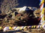 Фото из тура в Непал в 2004 году. Намче-Базар. Горные тары (местное название) приветствуют  утреннее солнце.