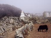 Фото из тура в Непал в 2004 году. Деревня Пхорце в устье  долины Гокио.