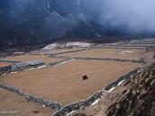 Фото из тура в Непал в 2004 году. Мачермо. Загоны для скота  с одиноким яком.