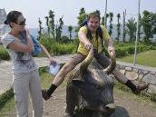 Фото из тура в Непал в 2012 году. Возьми быка за рога! Статуя яка рядом с музеем альпинизма в Покхаре.