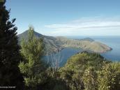 Фото из тура в Новую Зеландию в 2010 году. Заливы Мальборо Саундз с тропы Королевы Шарлотты. Новая Зеландия.