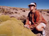 Фото из тура в Перу в 2004 году. Угнетенная растительность пуны -  мхи и лишайники на камнях.