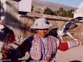 Фото из тура в Перу в 2004 году. Перуанка позирует с кондорами.