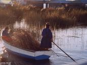Фото из тура в Перу в 2004 году. Тростник нужно все время заготавливать для починки  и новых построек.