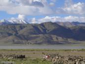 Фото из тура Непал-Тибет в 2004 году. Тибет. Долина реки Ярлунг.