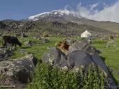 Фото из тура в Турцию в 2012 году. Проходим через очередное стойбище курдов, последнее перед базовым лагерем на 3200 м.