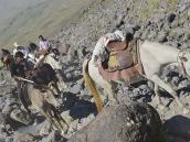 Фото из тура в Турцию в 2012 году.  Курды-погонщики каждый день ездят и проходят вверх-вниз по километру высоты, доставляя грузы между лагерями. Лошади ночуют всегда на 3200, где есть трава и ручьи.