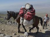 Фото из тура в Турцию в 2012 году.  А на Килиманджаро всю эту работу выполняют люди-портеры, которые к тому же носят поклажу на голове. Поэтому их там сотни.