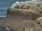 Фото из тура в ЮАР в 2013 году. Пока взрослые сидят за столиками, дети на берегу находят занятие по душе.