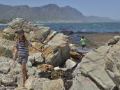 Фото из тура в ЮАР в 2013 году.  Вдаль по берегу уходит дорога, ведущая к Садовому Пути (Garden Route), одному из самых красивых побережий Африки и всего мира.
