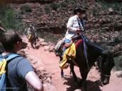Фото из тура в США в мае-июне 2010 года. Встреча на треке по Гранд Каньону, Аризона.