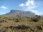 Фото из тура в Венесуэлу в феврале-марте 2012. Кукенан, сосед Рораймы.